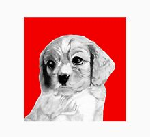 Cavalier King Charles Spaniel Puppy in Red T-Shirt