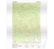 USGS Topo Map Washington State WA Doty 240886 1986 24000 Poster