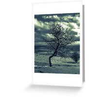 Against the Elements. Greeting Card