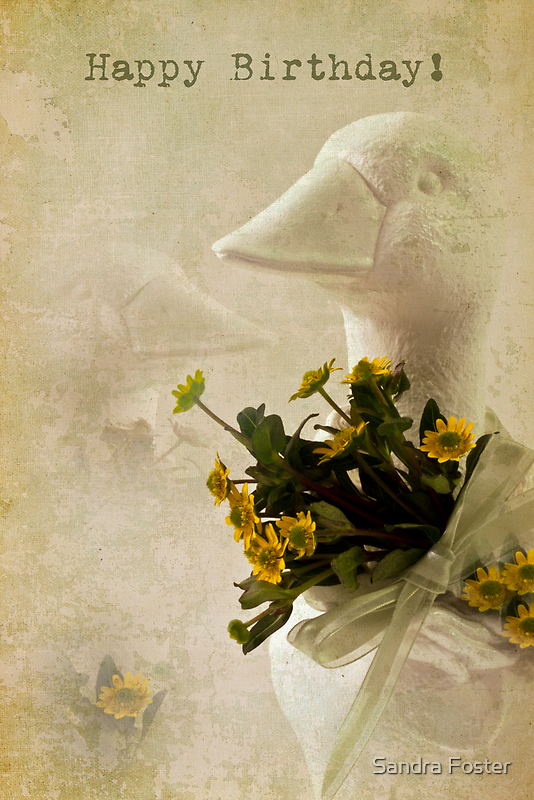 Duck And Yellow Daisy Birthday Card  by Sandra Foster