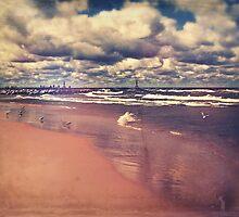 Lake Michigan Summer by perkinsdesigns