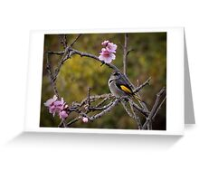 A Crescent Honey Eater Greeting Card