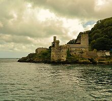 Dartmouth Castle by shalisa
