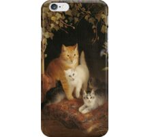 Kittens with Mother Cat iPHONE Case iPhone Case/Skin
