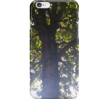 Tree Infusion iPhone Case/Skin
