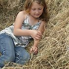 Beautiful Hay by gloriajean