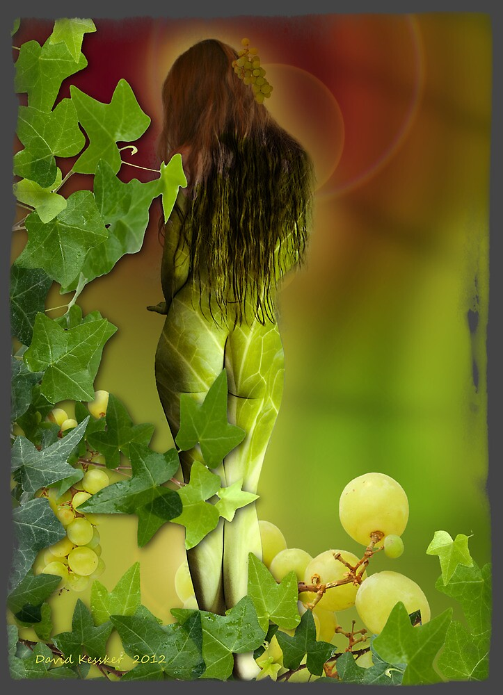 Ripened on the vine by David Kessler