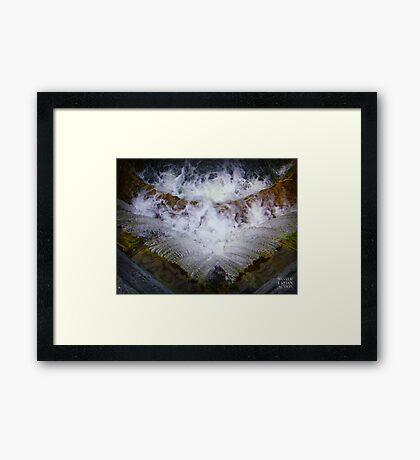 Fresh water Framed Print