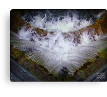 Fresh water Canvas Print