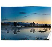 Fog over the pond II Poster