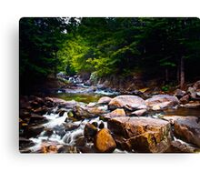 Streaming Video Canvas Print