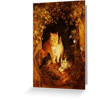 Acceptance of Comforts Greeting Card