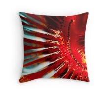 Of Fire & Passion Throw Pillow