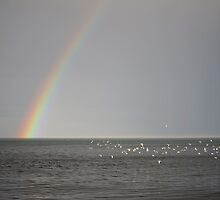Rainbow after the storm by StephenRB