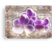 A bouquet of blessings Canvas Print