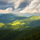 Roan Mountain Highlands Eastern TN - Shadows & Light by Dave Allen