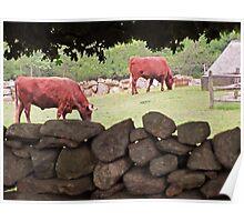 Bull session ... Poster
