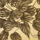 Plant Study IV by Lorelle Gromus