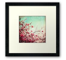 Pink Flowers on a Textured Blue Sky (Vintage Flower Photography) Framed Print