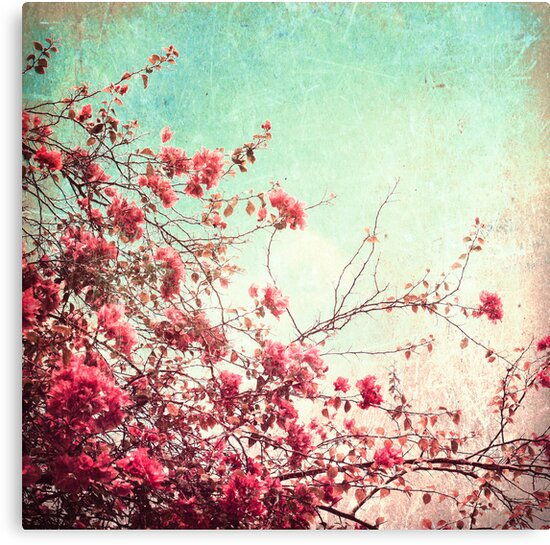 Pink Flowers on a Textured Blue Sky (Vintage Flower Photography) by Andreka