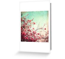 Pink Flowers on a Textured Blue Sky (Vintage Flower Photography) Greeting Card