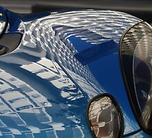 Curvy Reflectives by fototaker