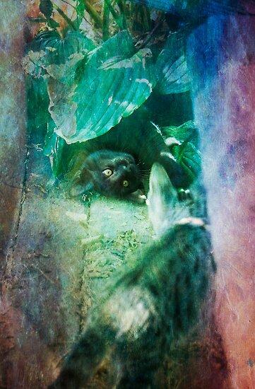 In Kittenland by Lynn Starner