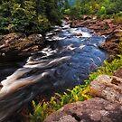 Dark Wild Waters. Scotland by JennyRainbow