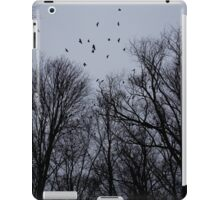 Raven Skies iPad Case/Skin