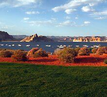 Lake Powell and houseboats, Utah, USA by Deb22