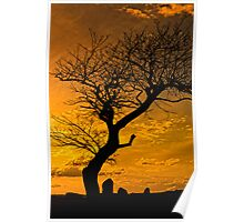 Silhouettes at Sunset - Dog Rocks Batesford Victoria Poster