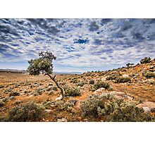 outback storm Photographic Print