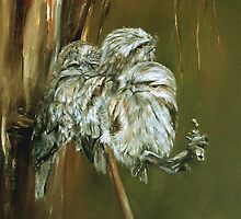 Tawny Frogmouth Family by Jacqui Cleijne