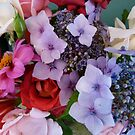 Colourful Bunch by DEB CAMERON