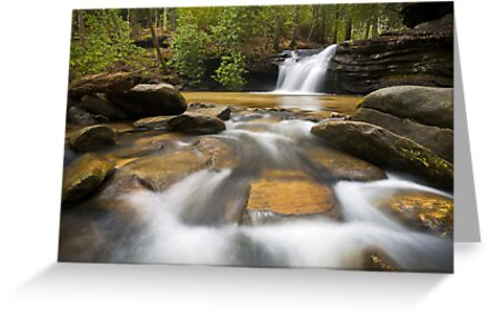 Upstate SC Waterfall Landscape Photography Blue Ridge Mountains - Flow by Dave Allen