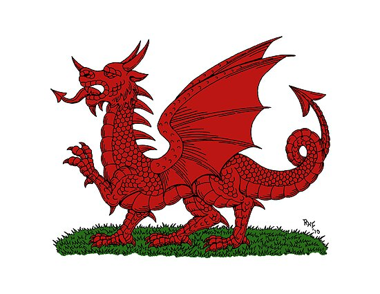 Red Dragon of Wales by Richard Fay