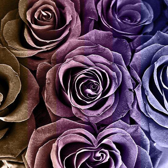 Rose Bouquet by Igor Shrayer