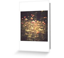 One Rose in a Magic Garden (Vintage Flower Photography) Greeting Card