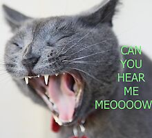 CAN YOU HEAR ME MEOOOOW? by Kimberly Palmer