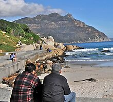 Hout Bay, South Africa by davridan