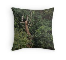 Great Blue Heron in Tree Throw Pillow