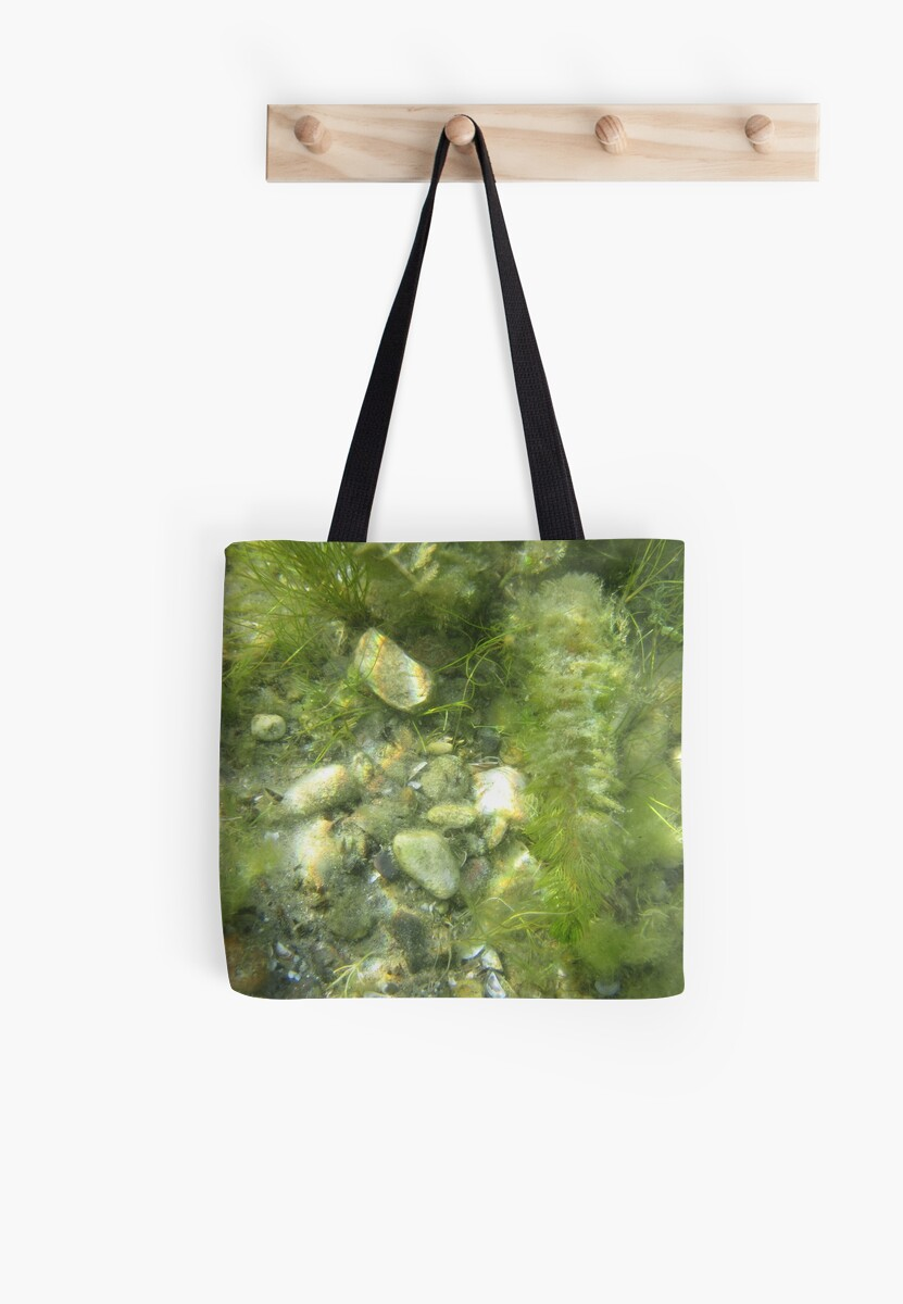 Underwater Vegetation 511 by Thomas Murphy