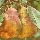 Pair of Pears in Van Gogh2HD with Texture by Robert Armendariz