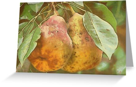 Pair of Pears in Van Gogh2HD with Texture by Robert Armendariz