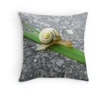 Back on the Green Track Throw Pillow