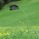 Swiss Shack by KimSha