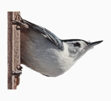 White-breasted nuthatch Kids Clothes