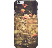 One Rose in a Magic Garden (Vintage Flower Photography) iPhone Case/Skin