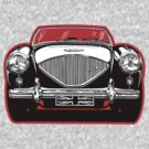 Austin Healey Sports Car by davidkyte