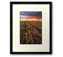 Sunset Through The Rain, Essex Framed Print